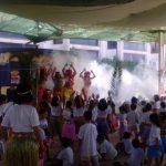fiestas-hawaiana (4)