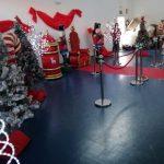 navidad-fiestas (8)