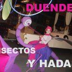 Duendes-insectos-y-hadas-012